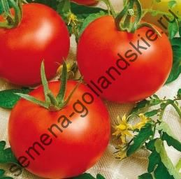 "Томат ""ХАЙНЦ 1350"" (Heinz 1350) 10 семян"